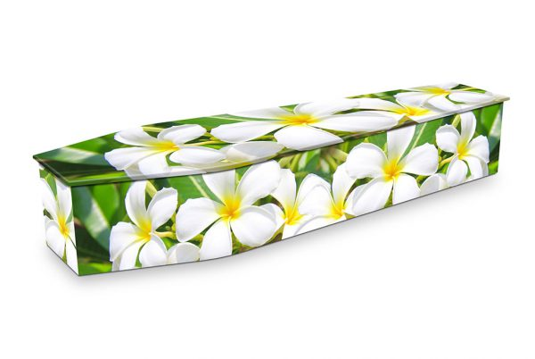 Frangipani Flowers Coffin